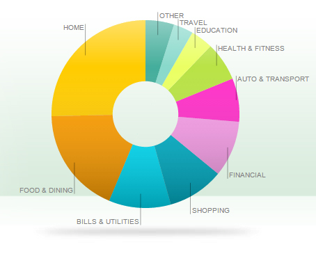 Post 3 Spending over the last year graph pie chart mint
